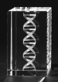 Crystal DNA Model 3D Engraved
