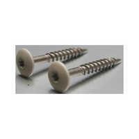 N2L41 Facade Screw