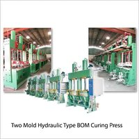 Two Mold Hydraulic Type B-O-M Curing Press