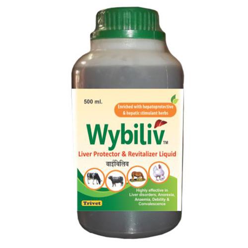 Liver Protector Revitalizer Liquid Syrup