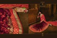 Designer Festival Sarees