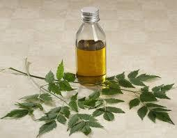 HAIR AND SCALP CLEANSER- NEEM