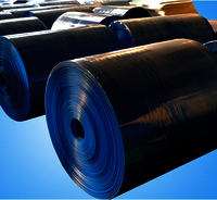 PP Corrugated Sheet Rolls