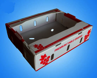 Foldable Plastic Corrugated Grape Box