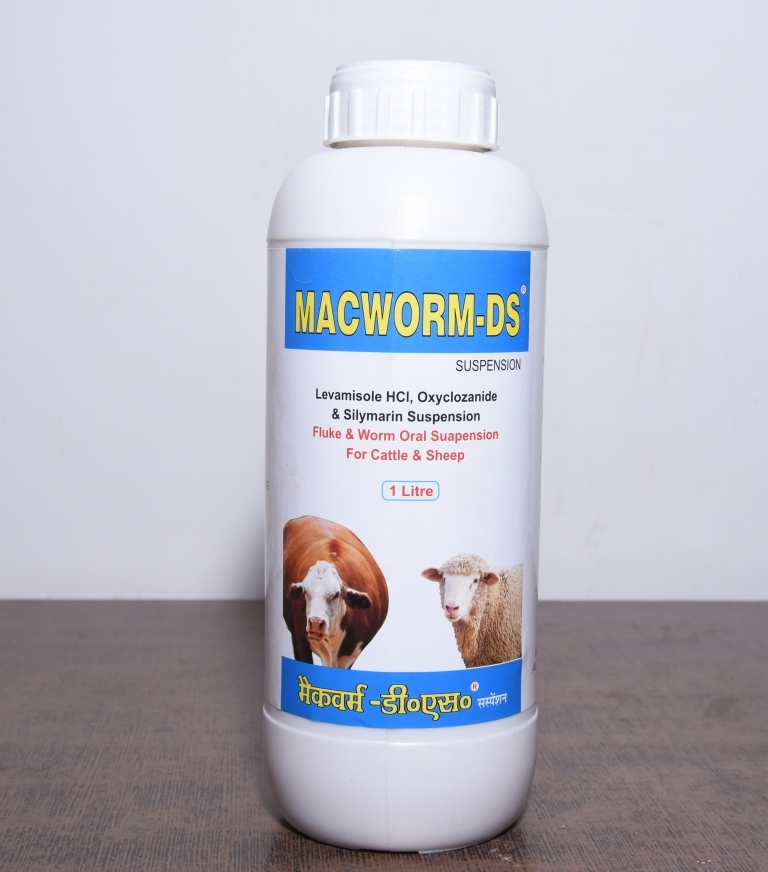 Macworm-Ds