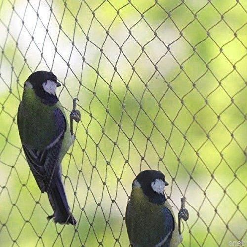 Nylon Anti Bird Protection Net