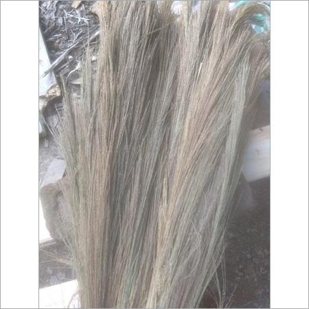 Raw Broom Grass
