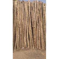 Nilgiri Wooden Poles