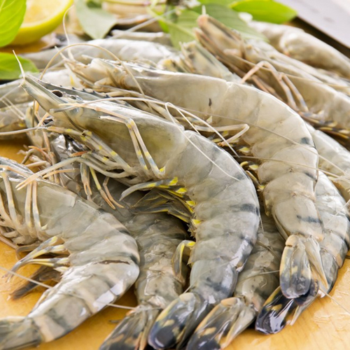 Raw Black Tiger Shrimp (Shell On)