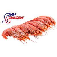 Red Shrimp (Solenocera Melantho)