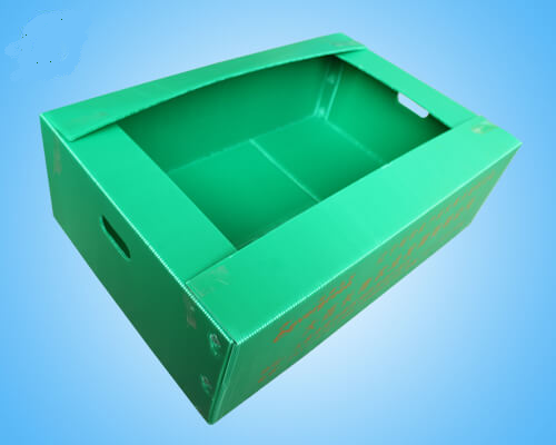 Corrugated Seed Seedling Box