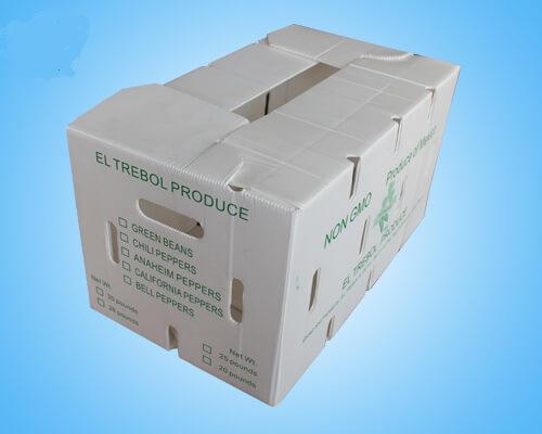 Plastic Corrugated Snow Pea Box