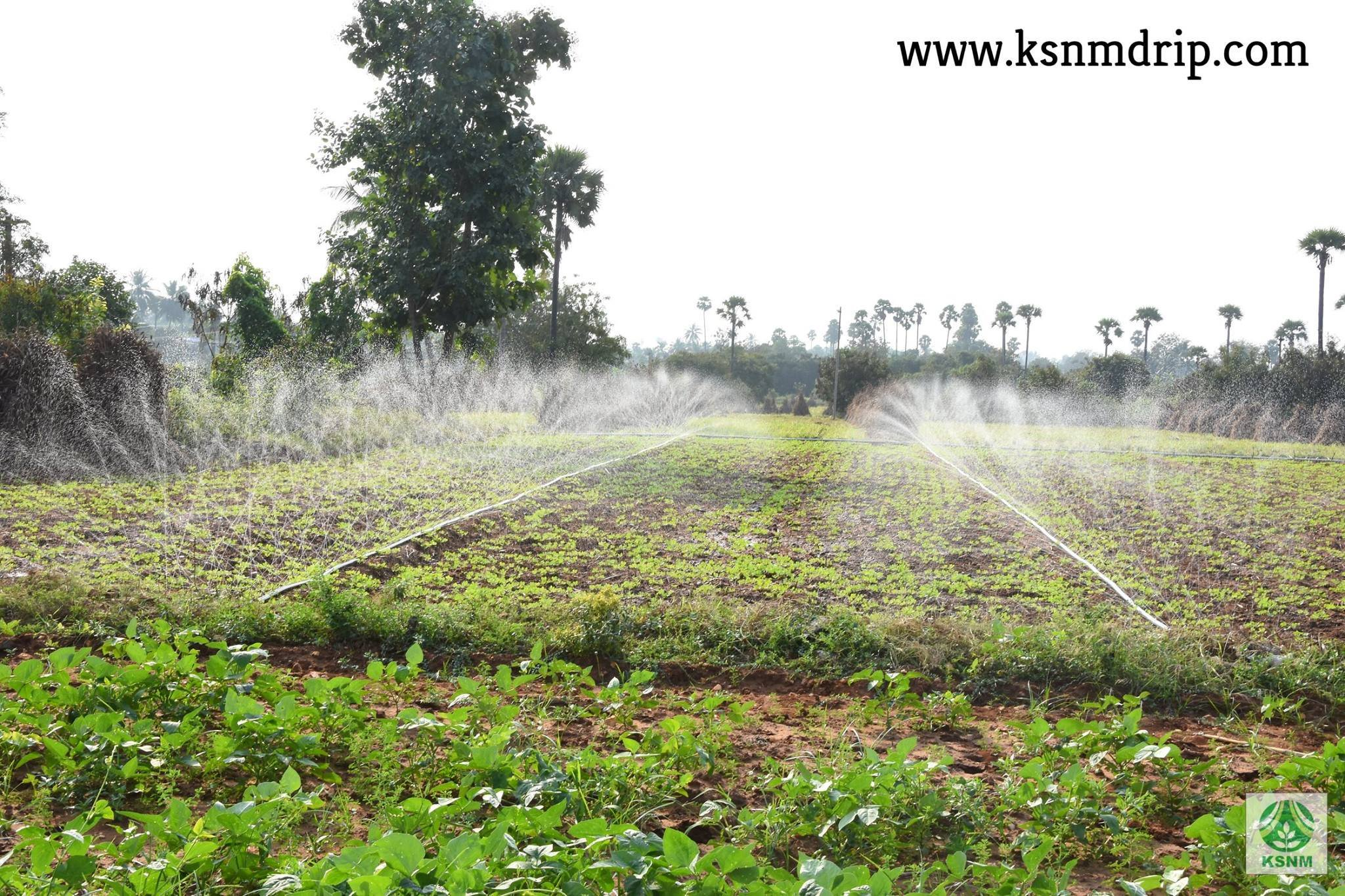 Spray Irrigation Kit 500 sqm