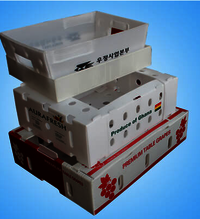Foldable Vegetable Corrugated Boxes