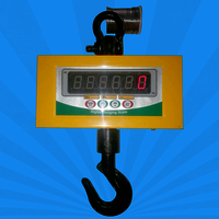 Hanging Scale Manufacturer In Gujarat