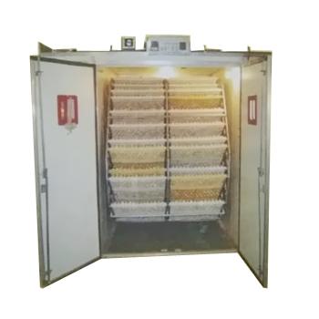 15000 Eggs Hatch Incubators