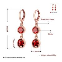 18K Rose Gold Plated Earrings