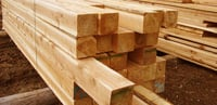 pine wood suppliers