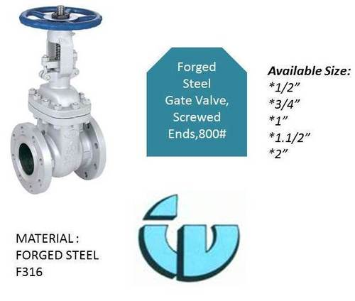 Forged Steel Gate Valve, Class800 F316