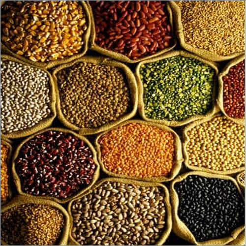 Pulses In Ludhiana, Pulses Dealers & Traders In Ludhiana, Punjab