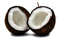 Fresh Indian Coconuts