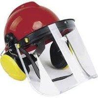Gas helmet