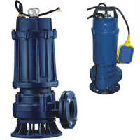 Cast Iron Sewage Souble Channel Pump