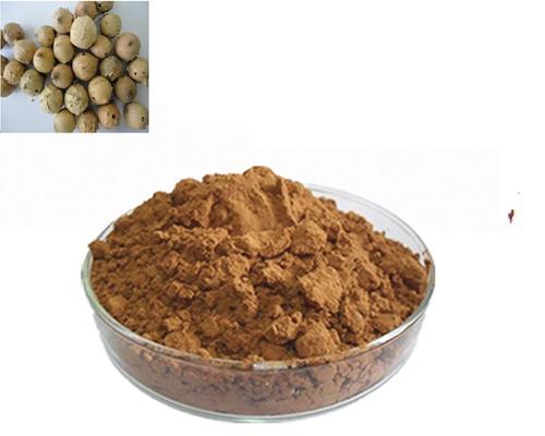 Majuphal (Quercus Infectoria)Powder