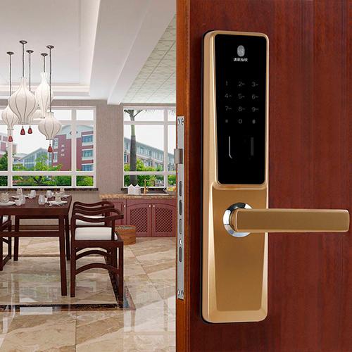 D1 type fingerprint lock
