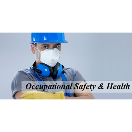 Occupational Safety and Health Monitoring Service