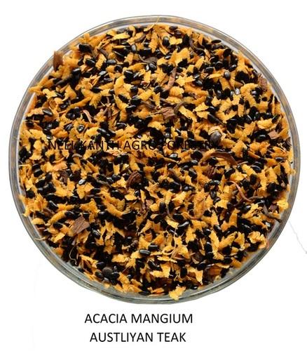 Acacia Mangium Austliyan teak