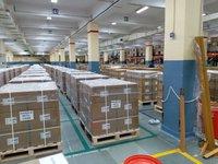 Export Palletisation