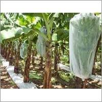 Non Woven Fabrics For Agriculture