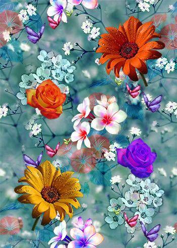 Fancy Digital Print Fabric