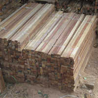 Pine Wood Cut size