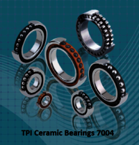 TPI Ceramic Bearings 7004