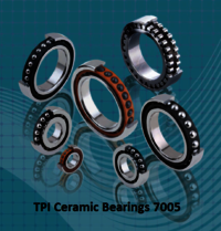 TPI Ceramic Bearings 7005