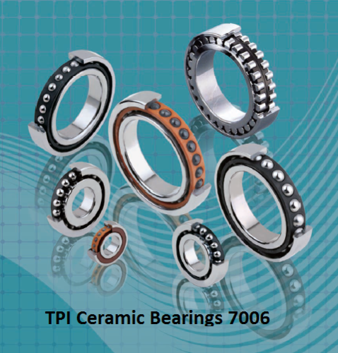 TPI Ceramic Bearings 7006