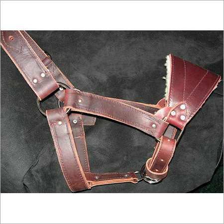 Western Leather Halter