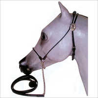 Finest Grade Leather Halter