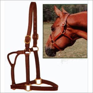 Stable Leather Halter