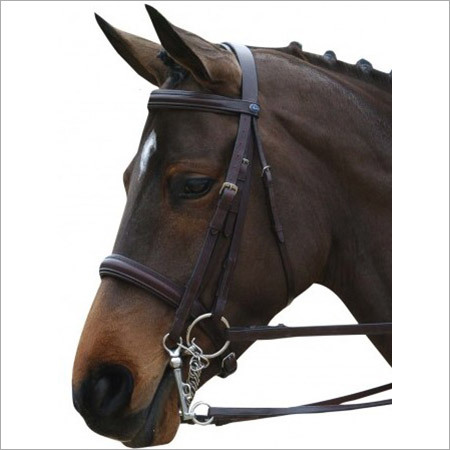 Riding Leather Bridle