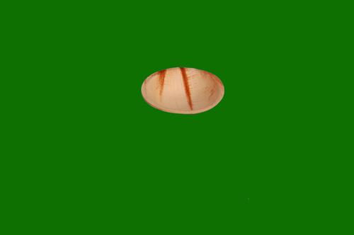 Areca Round Bowl 4.5inch
