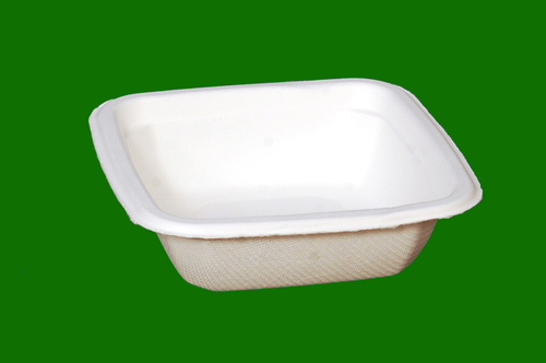 Sugarcane Bagasse G Square Bowl
