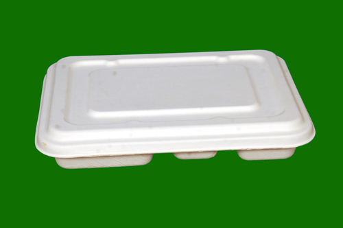 Sugarcane Bagasse 5 Compartment Rectangle Thali Plate