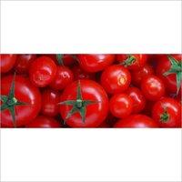 antioxidant lycopene