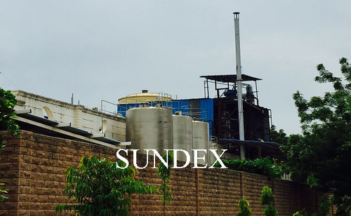 Sunflower Seed Solvent Extraction Plant