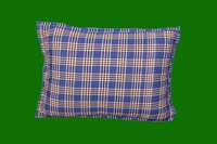 Vetiver Pillow 20 x 15
