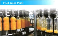 Fruit Juice Plant