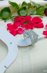 Fancy Imitation Ring